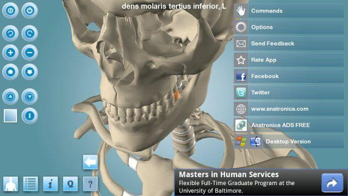 5 Sensacionales Aplicaciones en 3D para la clase de Anatomía ...