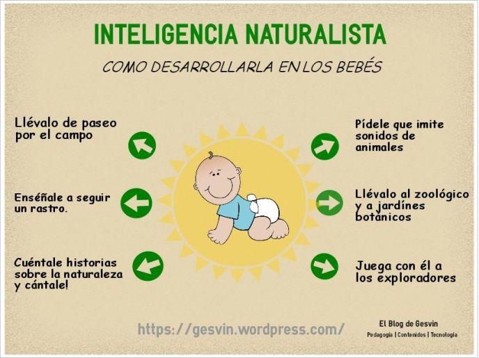 IM-NaturalistaBebes-Infografia-BlogGesvin