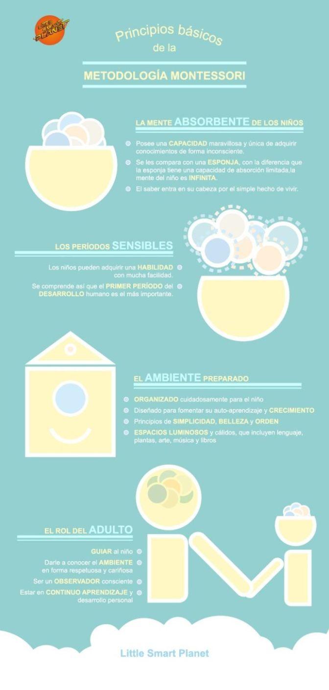 MetodoMontessori4PrincipiosBásicos-Infografía-BlogGesvin