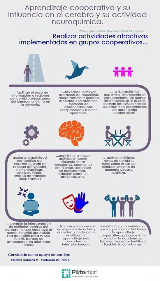 AprendizajeCooperativoSuInfluenciaEnCerebro-Infografía-BlogGesvin