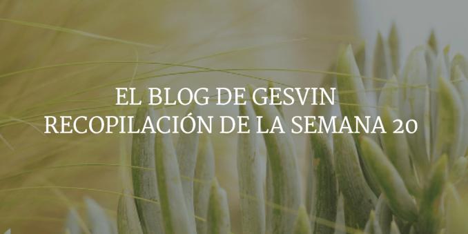 Semana20-15-BlogGesvin