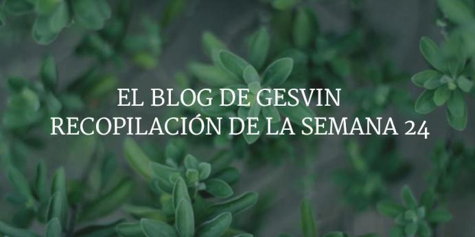 Semana24-15-BlogGesvin