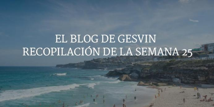 Semana25-15-BlogGesvin