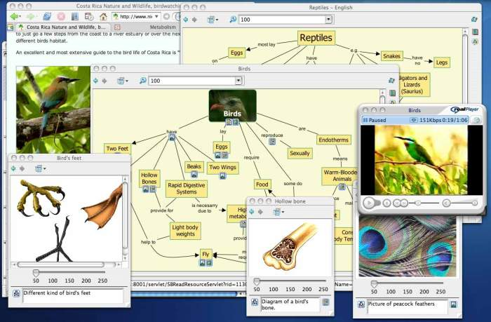 CmapCloudLaVersiónWebCmaptools-Artículo-BlogGesvin