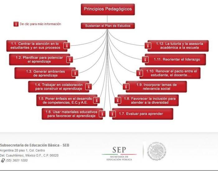 12PrincipiosPedagógicosEducaciónBásica-Sitio-BlogGesvin