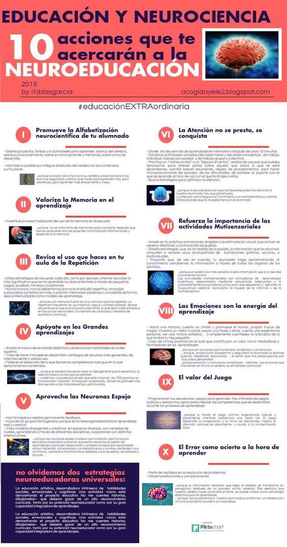 10clavesabordarneuroeducacion-infografia-bloggesvin