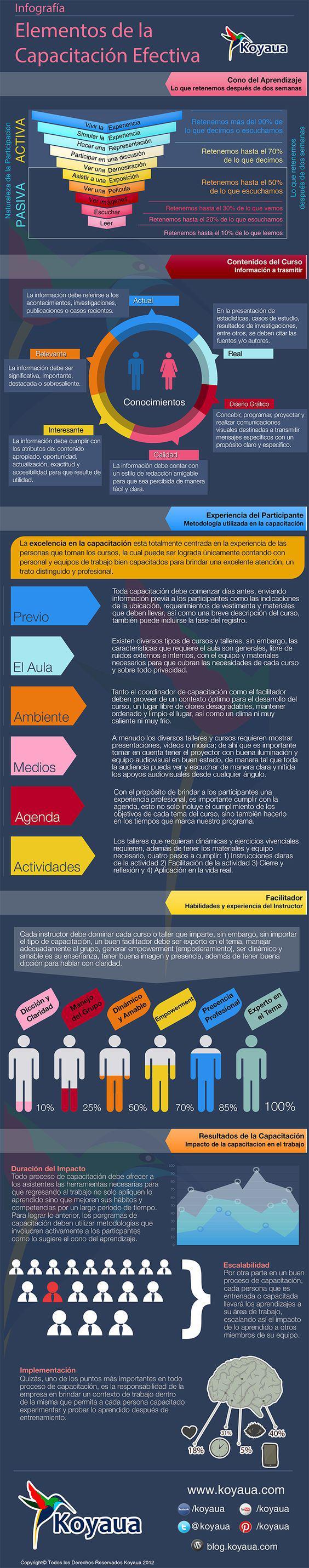elementosprogramacapacitacionefectiva-infografia-bloggesvin