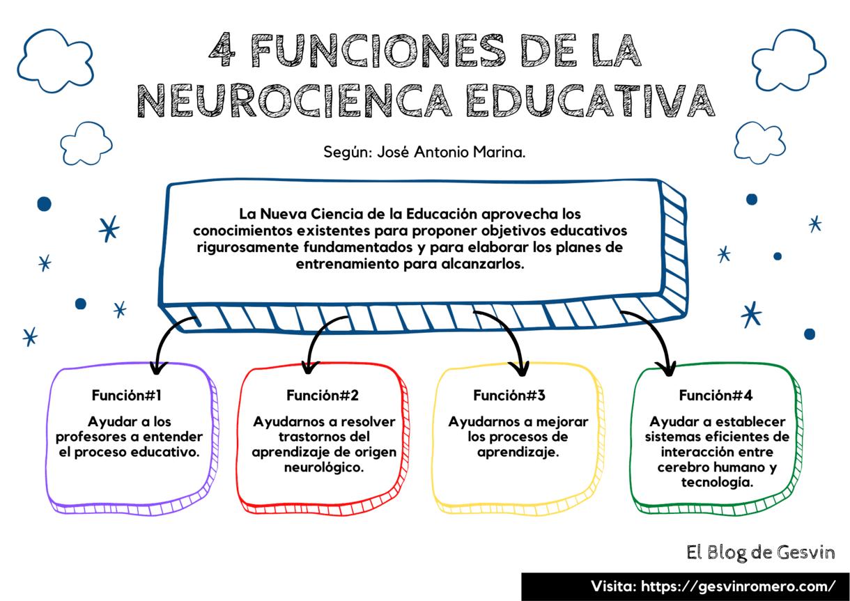 4 Funciones de la Neurociencia Educativa.